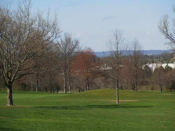 Well-groomed fairways and greens keep RVCC Golf course difficult yet friendly