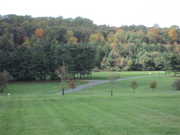 Scenic view in Alexandria Township