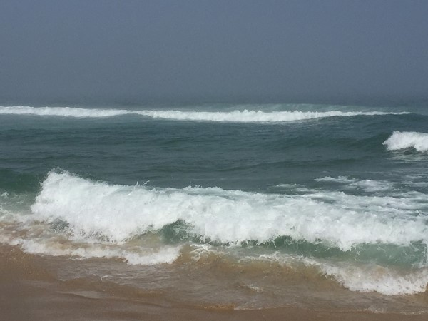 Our beautiful waters of Beach Haven