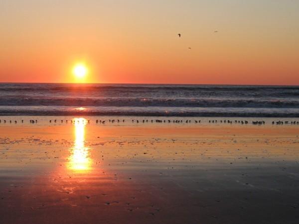 Enjoy the sunrise on the beach!