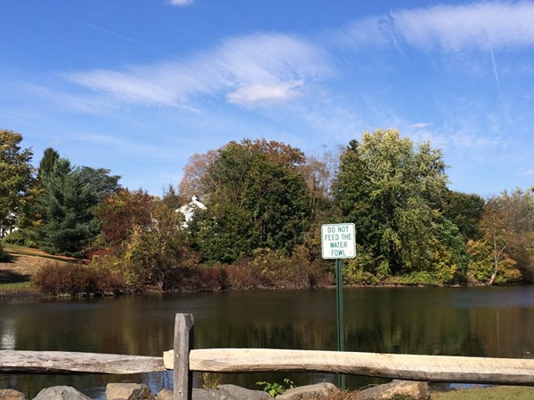 Zabriskie Pond in Wyckoff, NJ
