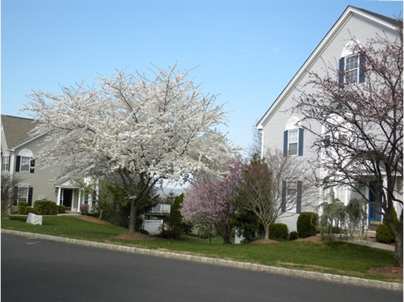 Development features some spectacular spring foliage. Distant views can be seen between townhouses