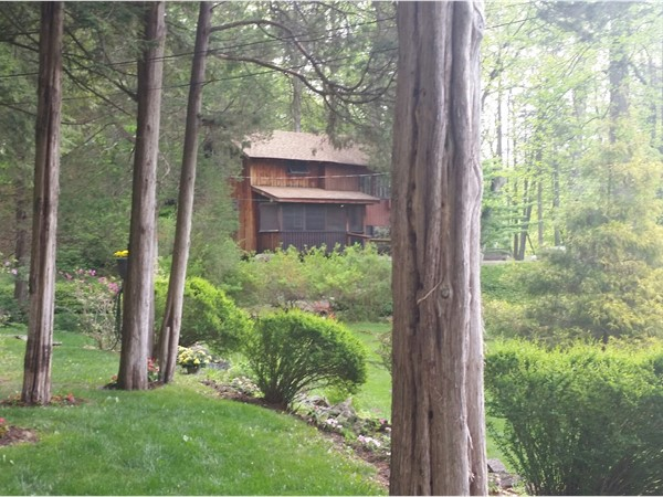 Cabins in the woods. Hampton Township is a great place to find these special treasures
