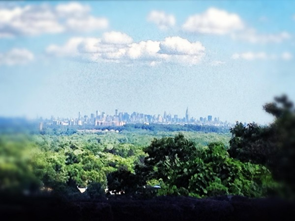 View of New York City from Crest Road, Ridgewood