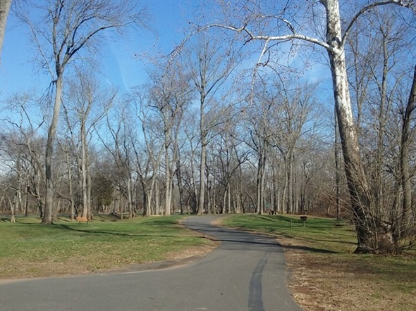 Attention joggers and strollers! Duke Island Park has some very nice trails for you to exercise on