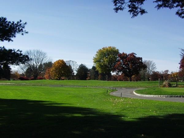 Edgewood Country Club golf path
