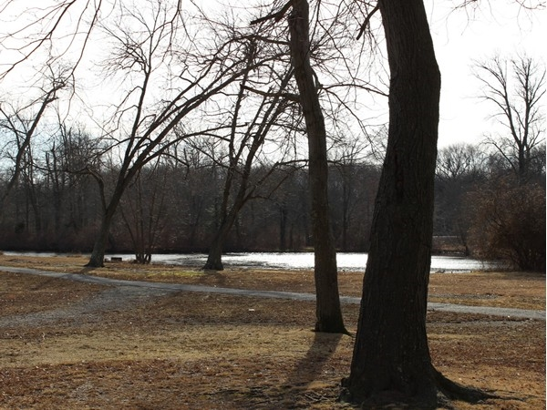 View of the Great Egg Harbor River in Berlin Park