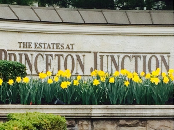 Princeton Junction's newer Toll Brother homes from 500k-upper 800k close to NYC train station.