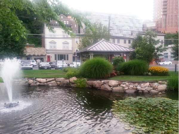 Walk along the lily ponds, admire plantings, enjoy harbor breeze and the family owned restaurants