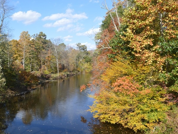 Fall foliage along the Ramapo River