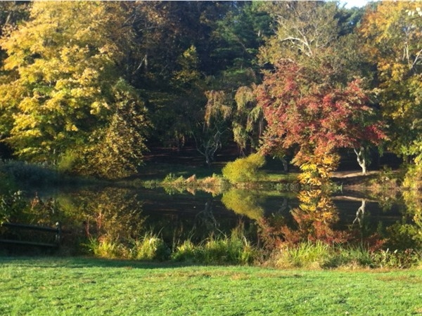 A beautiful autumn day in Holmdel Park