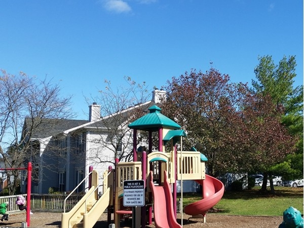 Beacon Hill playground