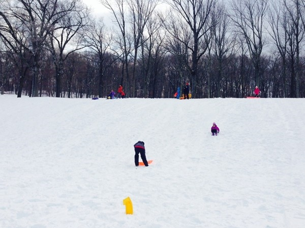 Sledding in Hopatcong State Park