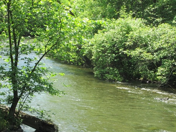 Enjoy a hot dog at a picnic table and watch the Pequest River flowing in the background
