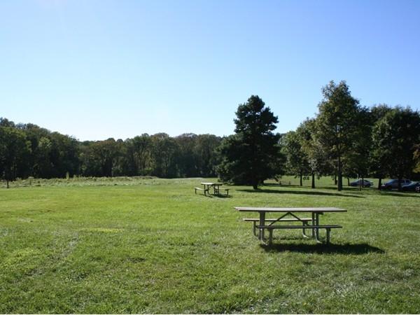 Tatum Park picnic area