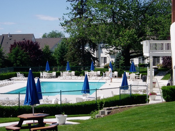 Pool at Cambridge Heights