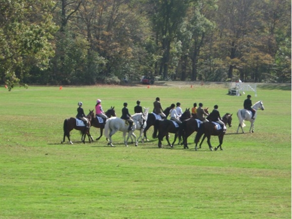 Natirar Park has the Ninety Acres restaurant, spa, walking paths, and horse racing as well
