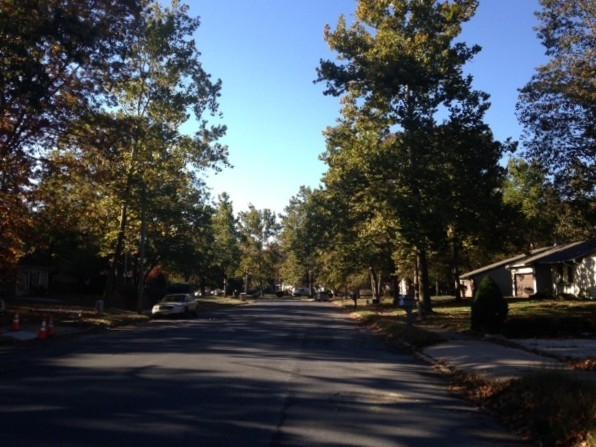 Another tree lined street in the Flair Development