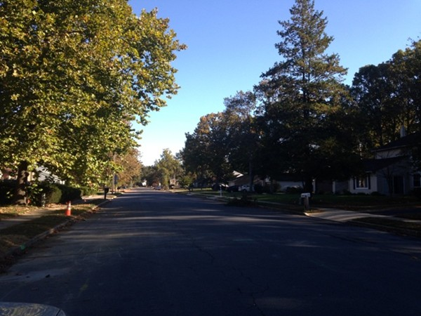 Tree Lined Street in the Flair Development off of Brewers Bridge Road