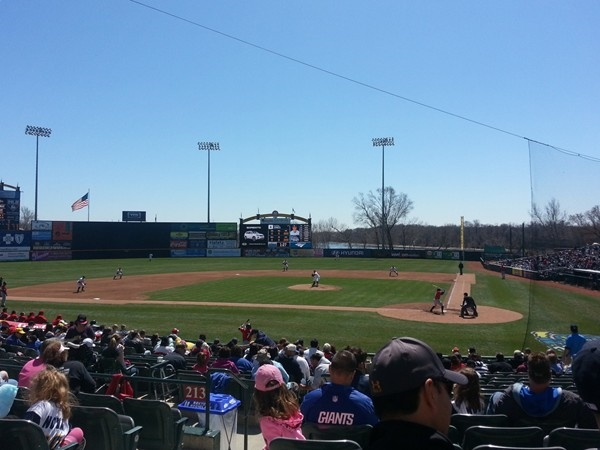 Mercer County's Minor League Baseball team, The Trenton Thunder, playing at Arm & Hammer Park