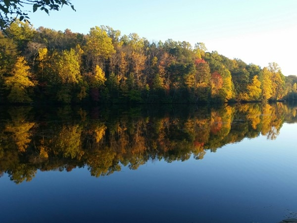 """Fall back"" and enjoy the season. Sussex County is now a playground of colors! Come and enjoy"