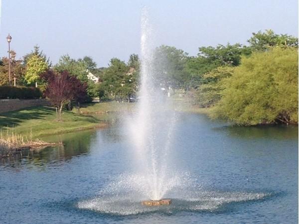 Pretty lake fountain at The Renaissance