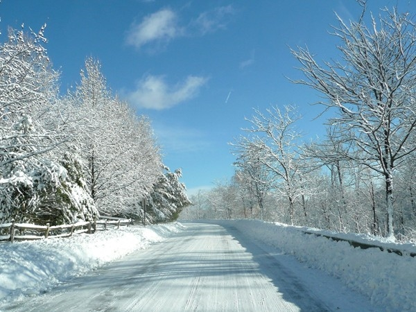 Snowy Roads in the Ramapo River Reserve