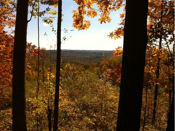 Fall scene from the top of the mountain at Berkshire Valley Wildlife Management Area