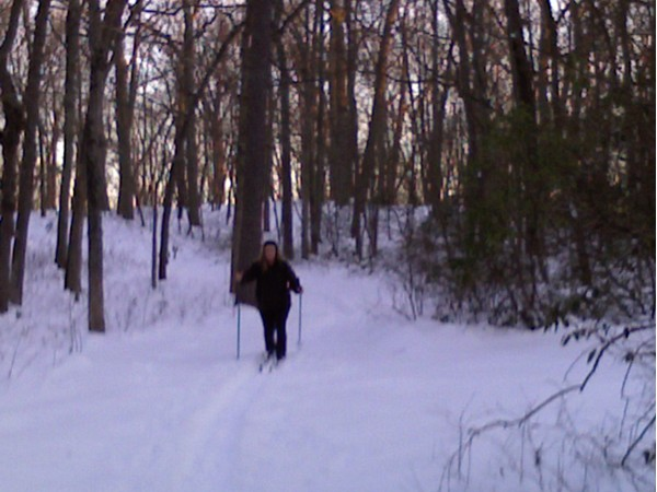 Believe it or not, Allaire State Park offers some great cross country skiing
