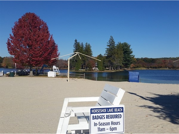 Beach view for the aptly named Horseshoe Lake