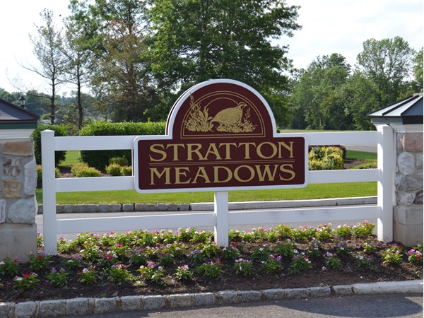 Stratton Meadows is a very large community located directly off Route 22 east