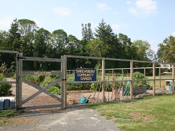 Shrewsbury Community Garden