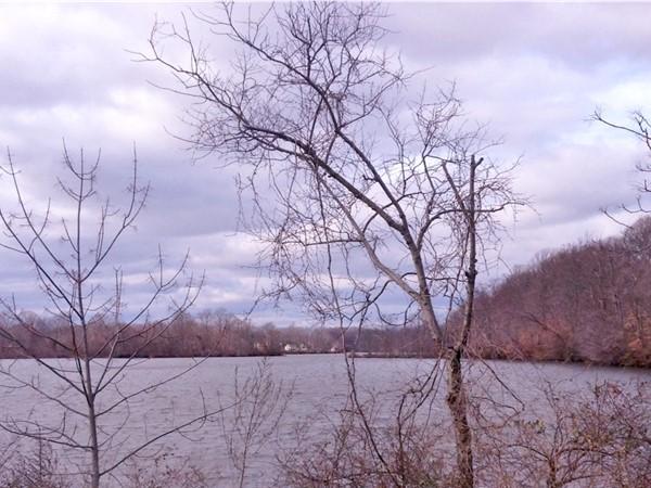 Swimming River Reservoir - view from Phalanx Road  between Colts Neck and Lincroft