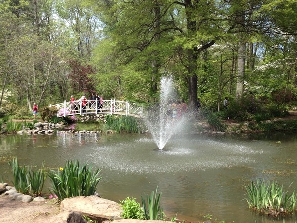 Annual Mother's Day Azalea Fest
