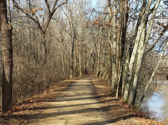 Into the woods, along the trail, on a crisp, sunny Christmas morn 2014