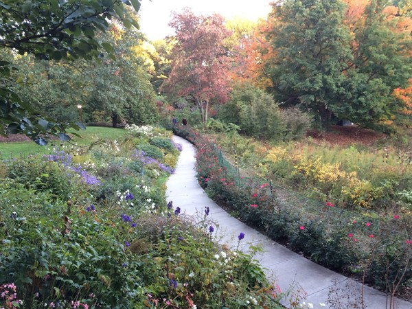 There are five acres to wander in the Reeves-Reed Arboretum, which is open until dusk