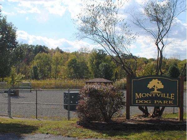 Montville Dog Park