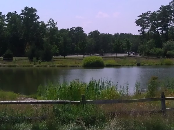 Beautiful scenery at Freedom Fields County Park
