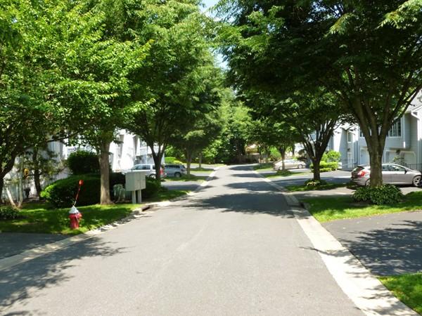 Stonybrook Manor - street view