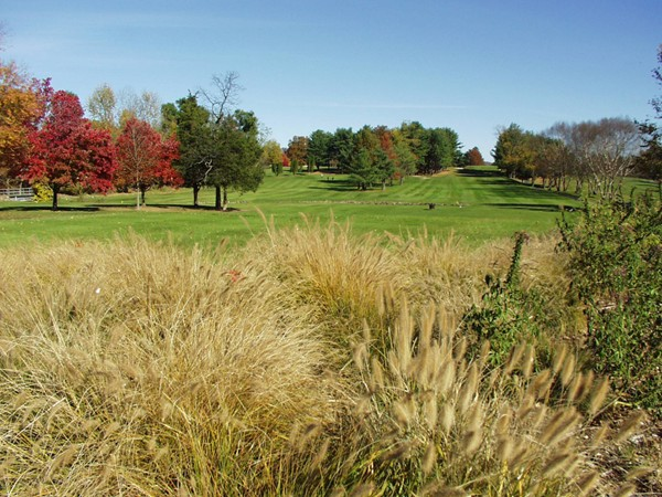 River Vale Country Club: 10th hole