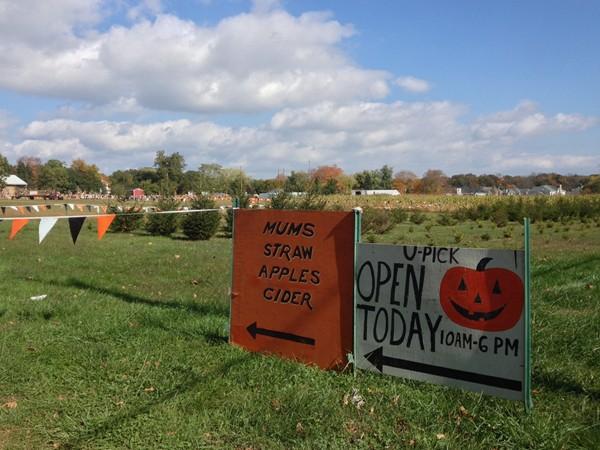 Fall at Conklin Farm