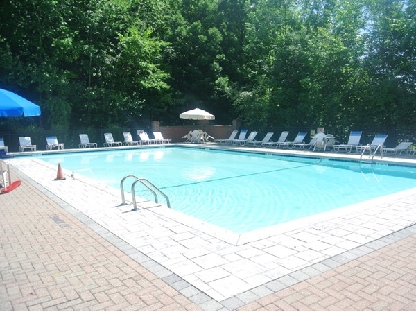 Beautiful pool in Darlington Ridge