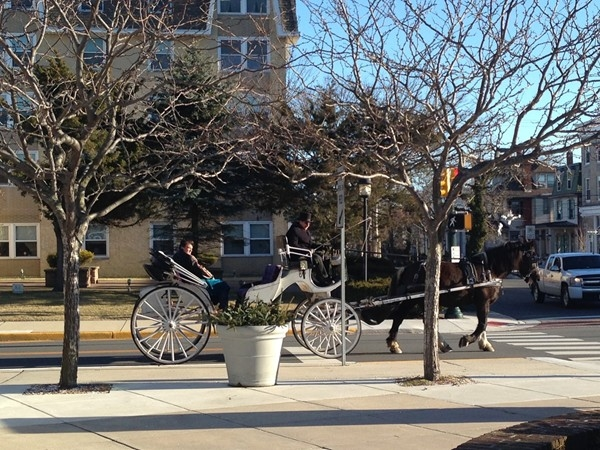 Carriage rides are enjoyed thoughout the year in Cape May
