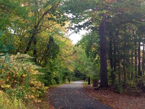 The trail around Milltown Pond in Milltown