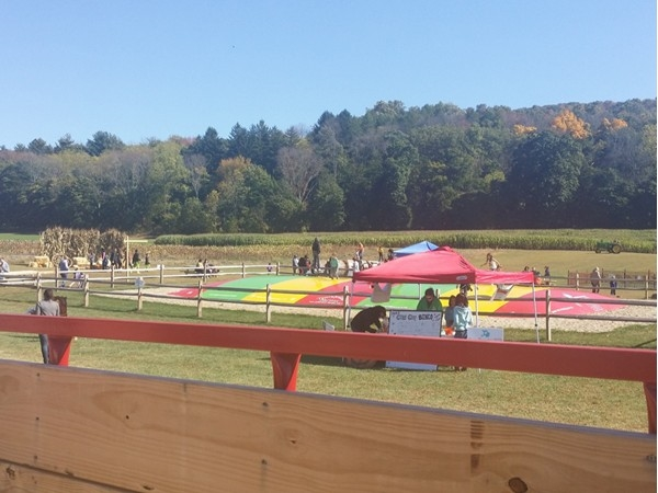 Giant outdoor bounce at Tranquility Farms