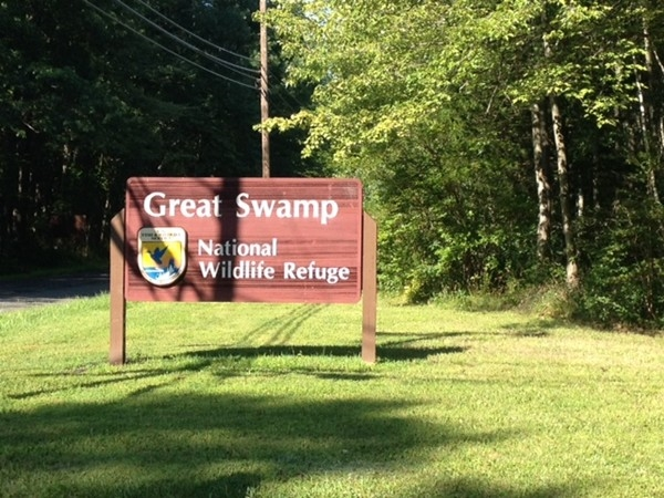The Great Swamp entrance
