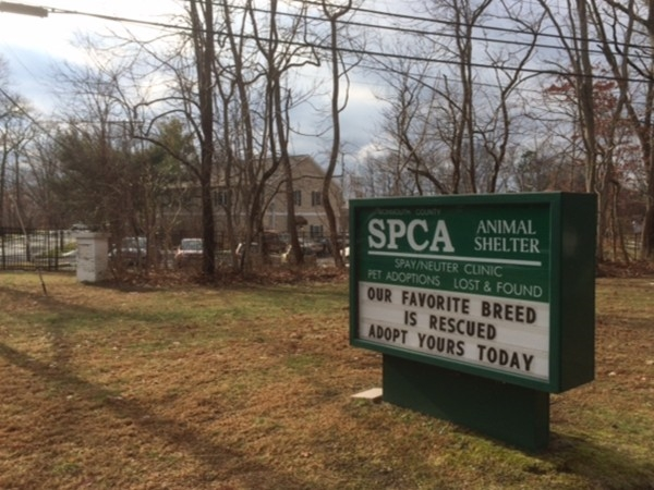 SPCA of Eatontown packed with potential adoptive families.. Great gift for pets and families!!