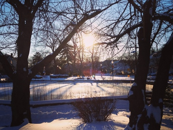 Halcyon Park's frozen and snow covered pond