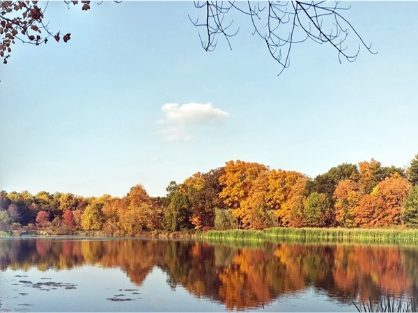 Kitchell Pond in fall 2016, is located in Loantaka Brook Park