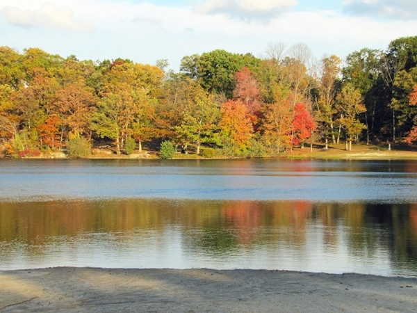 Beach/Pond view, early fall at Cook's Pond, Denville